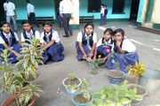 Jitpur Academy-Tree Plantation
