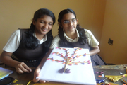 TMAES Dav Public School-Activity