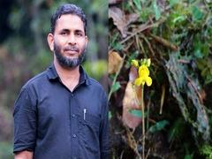 Utricularia Kamarudeenii: Carnivorous Plant Found In Kerala Named After Environmentalist