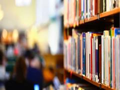 Committees Formed To Prepare Academic Curriculum: Karnataka Deputy Chief Minister