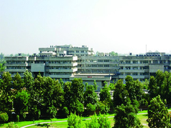 Uttar Pradesh Government To Bear All Expenses Of NEET Topper Akansha Singh's Graduation Studies: CM Adityanath