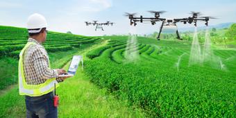 Agricultural Technician - Career, Role, Education, Jobs & Salary
