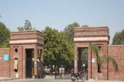 DU college teachers boycott online classes, official work to protest non payment of funds