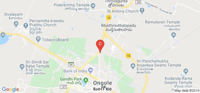 SRI SATYA NARAYANA ENGINEERING COLLEGE, Kurnool Road, ENDLURU DONKA, Ongole, Andhra Pradesh, India