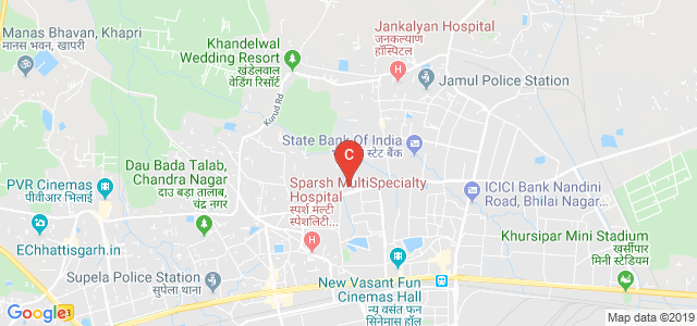 Indira Gandhi Govt. Arts, Science and Commerce College Vaishali Nagar Bhilai Durg C.G., Bhilai, Chhattisgarh, India
