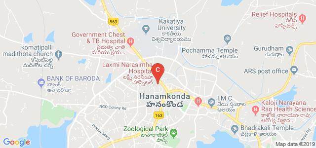 vaagdevi degree & pg college, Rajaji Nagar, Naim Nagar, Hanamkonda, Telangana, India