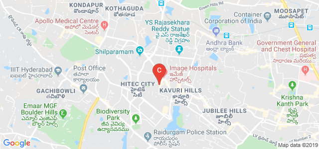 Sri Venkateshwara College of Fine Arts, Vittal Rao Nagar, Madhapur, Hyderabad, Telangana, India