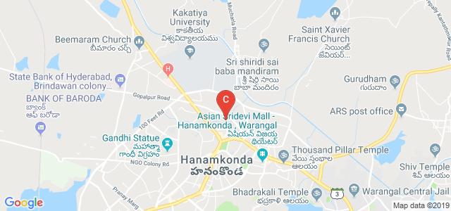 Chaitanya Institute Of Technology And Science, Jagruti Colony, Naim Nagar, Warangal, Telangana, India