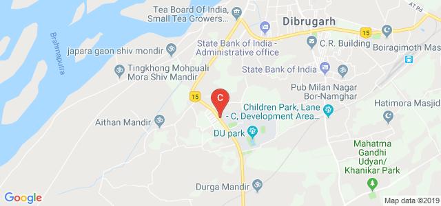 Dibrugarh University Institute Of Engineering And Technology, Dibrugarh, Assam, India