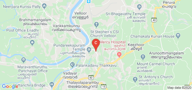 Devaswom Board College Thalayolaparambu, Thalayolaparambu, Kerala, India