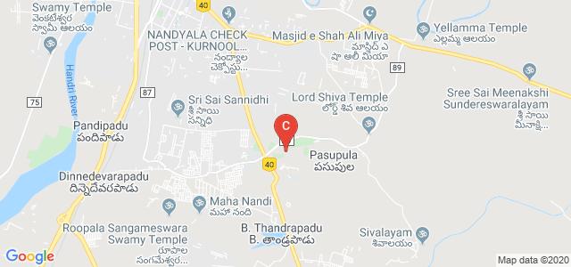 Rayalaseema University College of Engineering, Unnamed Road, Pasupula, Kurnool, Andhra Pradesh, India