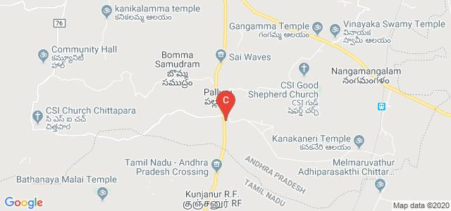 SRI LAKSHMI NARASIMHA COLLEGE OF PHARMACY, Vellore - Chittoor Road, Palluru, Andhra Pradesh, India
