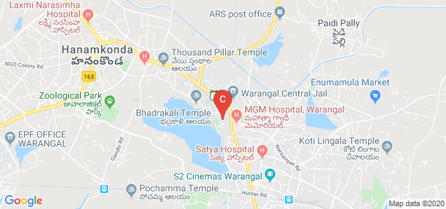 Govt Polytechnic For Women, Mulugu Rd, Nizampura, Warangal, Telangana, India