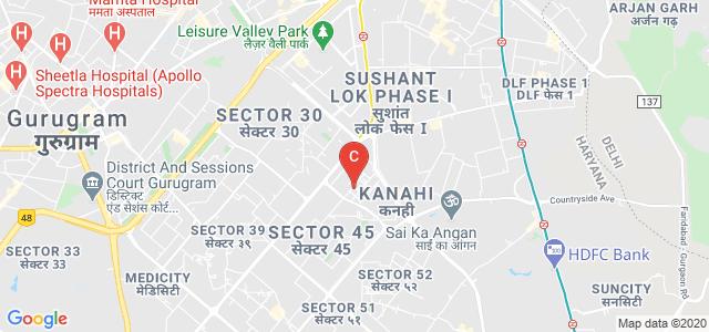 Global Risk Management Institute, Sector 44, Gurugram, Haryana, India
