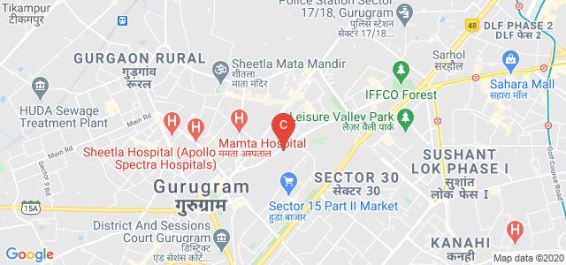 Government College for Girls, Mehrauli-Gurgaon Road, Sector 15 Part 2, Sector 14, Gurugram, Gurgaon, Haryana, India