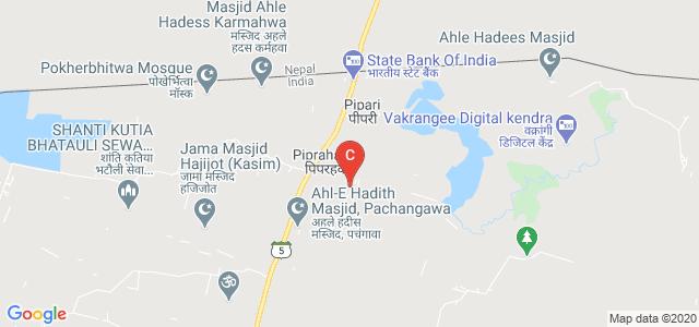 Siddharth University, Kapilvastu, Siddharth Nagar, Kapilavastu Road, Pachangawa, Siddharthnagar, Uttar Pradesh, India