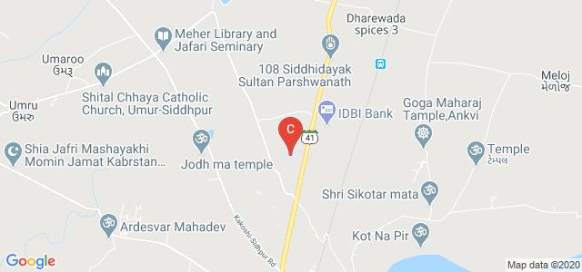Gokul Global University, Gujarat State Highway 41, Siddhpur, Gujarat, India