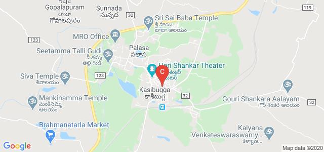 Sri Bala Siva Yogeendra Maharaj Degree College, Kasibugga, Andhra Pradesh, India