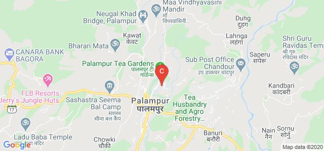 KLB DAV College for Girls, Lohna, Palampur, Himachal Pradesh, India