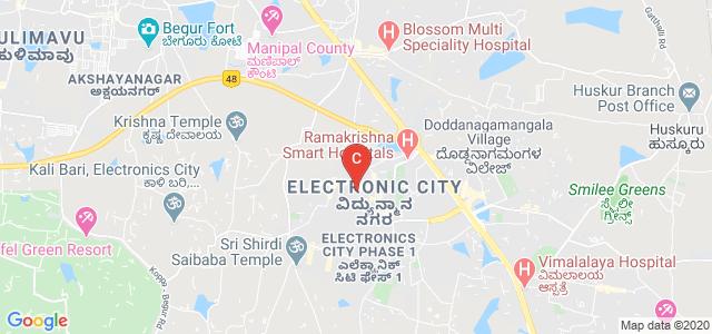 Electronic City, Bangalore, Karnataka 560100, India