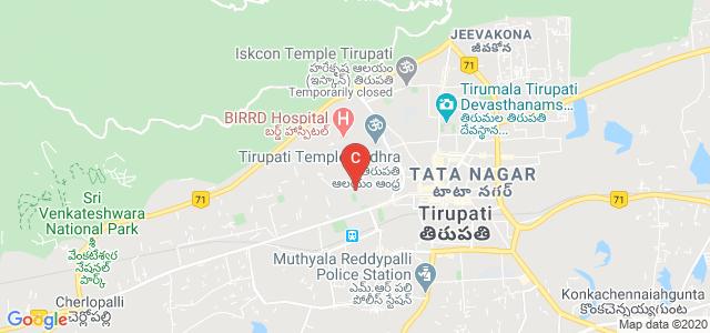 S V Arts College, Sri Venkateswara University Rd, Balaji Colony, Tirupati, Andhra Pradesh, India