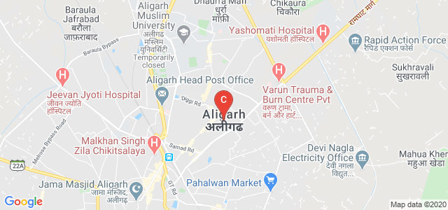 Aligarh, Uttar Pradesh, India