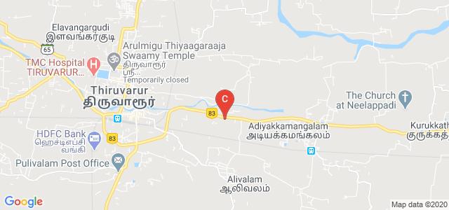 Thiru.Vi.Ka Govt.Arts college., Coimbatore Nagapattinam Highway, Kidaramkondan, Thiruvarur, Tamil Nadu, India