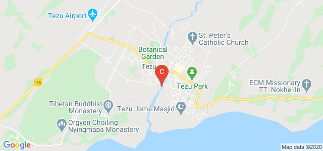 Denning College Of Teachers Education., Telluliang, Tezu, Arunachal Pradesh, India