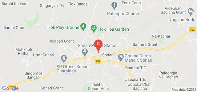 Sonari Commerce College, Dhodar Ali Road, Sonari, Assam, India