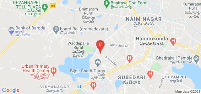 Pingle Government Degree College for Women, Waddepally, Wadepally, Hanamkonda, Telangana, India