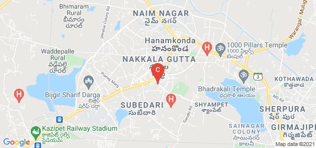 Masterji Degree & PG College, Postal Colony, Subedari, Hanamkonda, Telangana, India