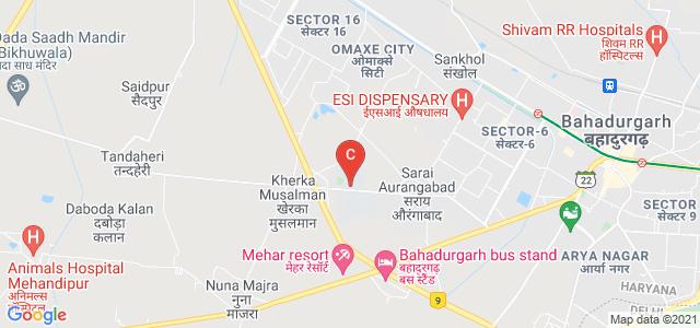 PDM University, PDM Road, Sector 3A, Bahadurgarh, Haryana, India