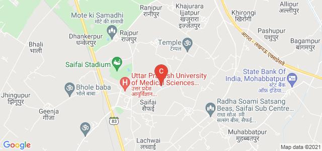 Pharmacy College Saifai, Uttar Pradesh University of Medical Sciences, Saifai, Uttar Pradesh, India