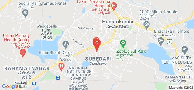 University P.G College For Womens, Revenue Colony, Prakashreddypet, Hanamkonda, Telangana, India