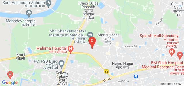 Shri Shankracharya Technical Campus, Junwani, Smriti Nagar, Bhilai, Chhattisgarh, India