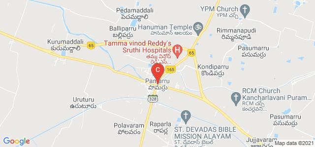 Pamarru, Andhra Pradesh, India