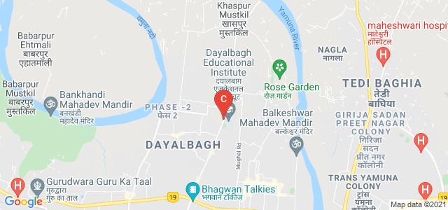 Dayalbagh Educational Institute, Dayal Bagh Road, Dayal Bagh, Agra, Uttar Pradesh, India
