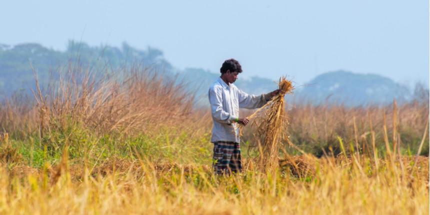 Lockdown: College teacher turns farm labourer to support family