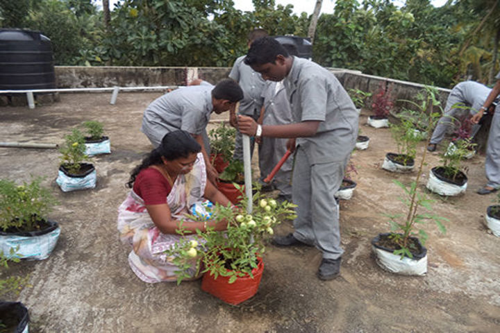 The City Central School-Plantation Activity