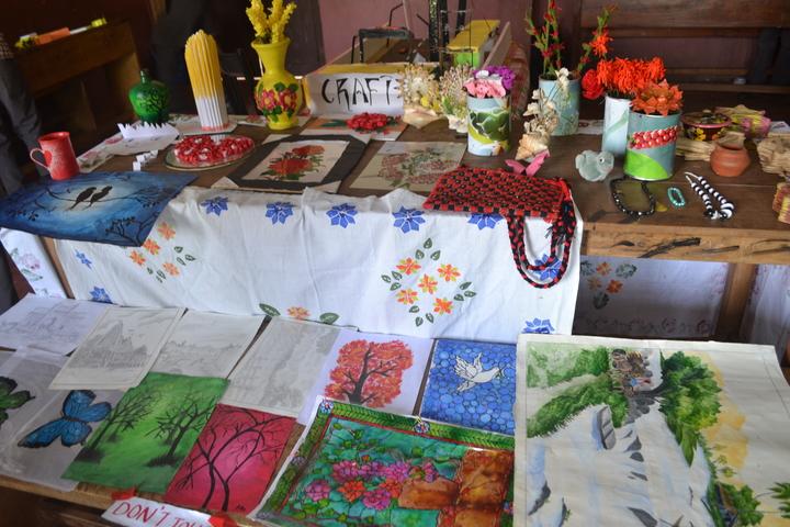 Vidyanagar public school - school fair