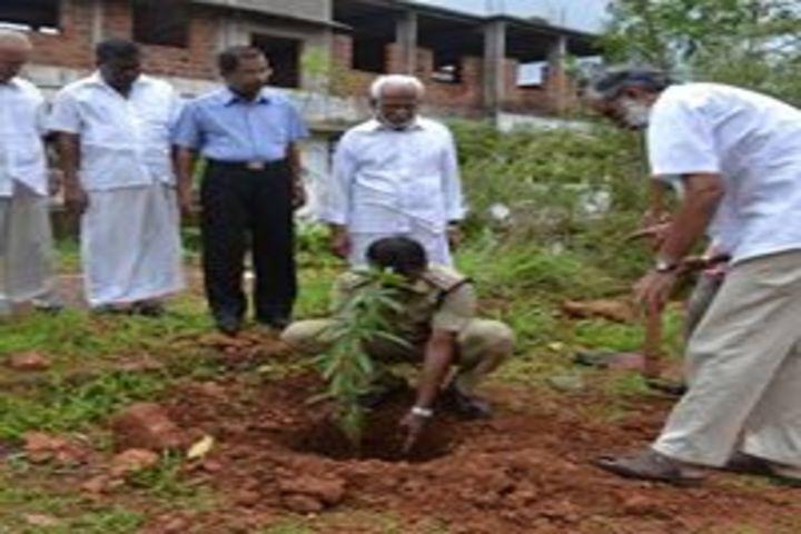 Vidyanagar public school - tree planting