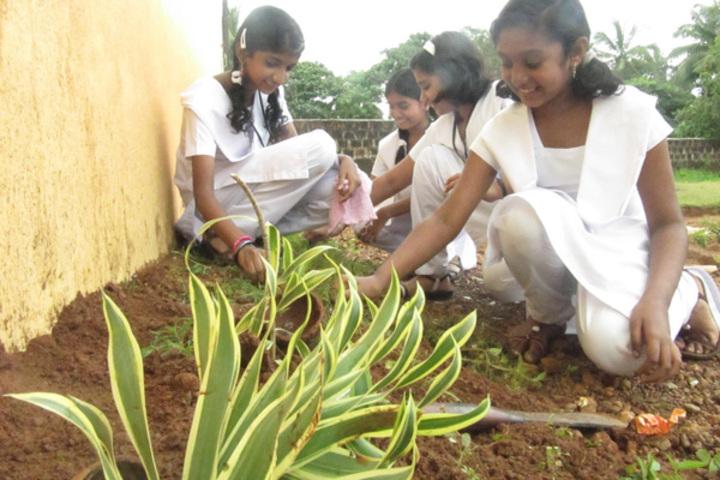 Vidyatmika Public School-Tree Planting