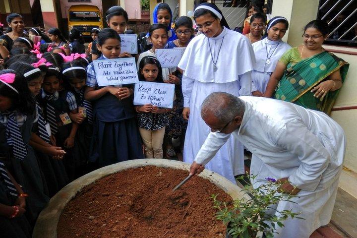 Vimal Jyothi Public School - planting tree
