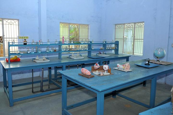 Viswabharathy Public School-Geography Lab