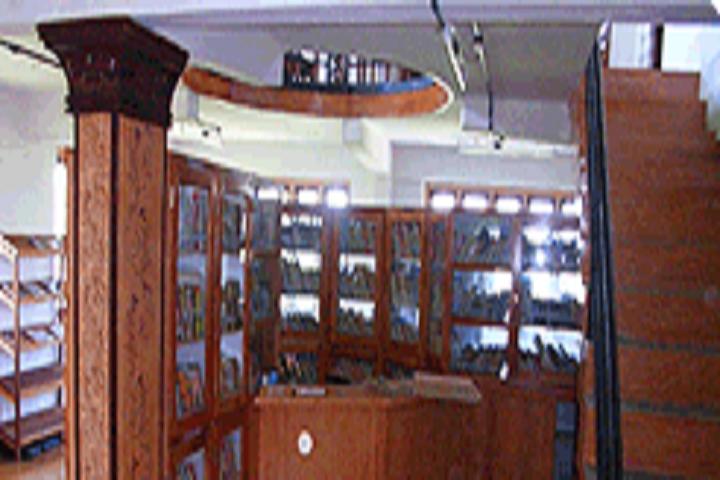 Zion Public School-Library