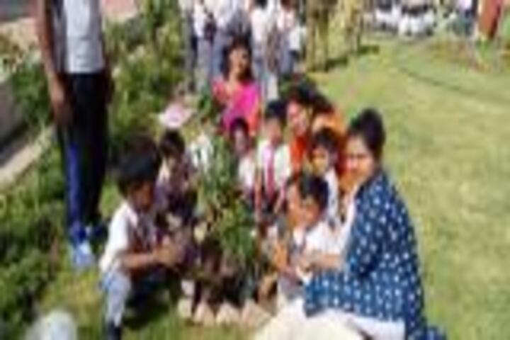 Army Public School-Tree Plantation