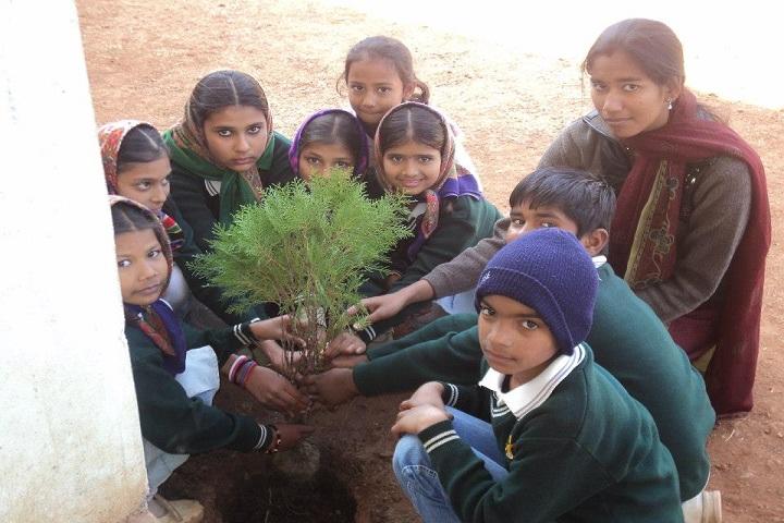 Child Zone School-Plantation