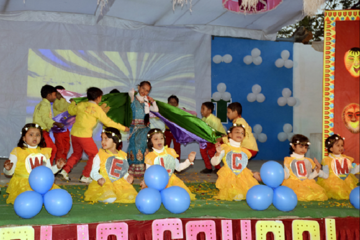 D A V Public School Panna - Annual day