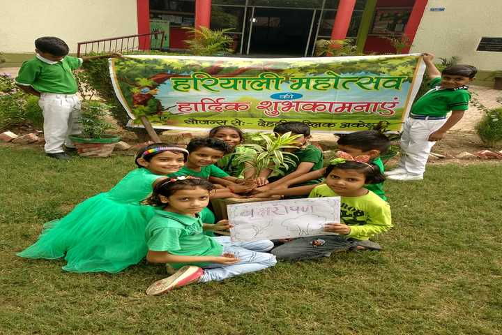 Delhi Public Academy-Plantation