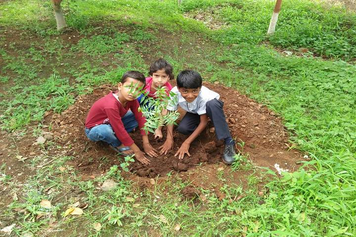 Education Park-Tree Plantation